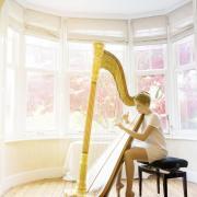 Agnes clement harpe 6